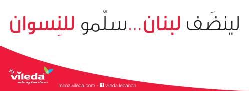 Vileda Lebanon Women Sexist Campaign